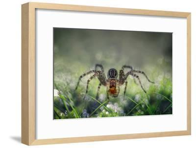 I Am Back to You-Erwin Astro-Framed Photographic Print
