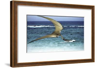 Pterodaustro Skimming the Water for Crustaceans-Stocktrek Images-Framed Art Print