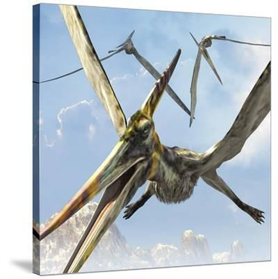 Flying Pterodactyls Searching for Food-Stocktrek Images-Stretched Canvas Print