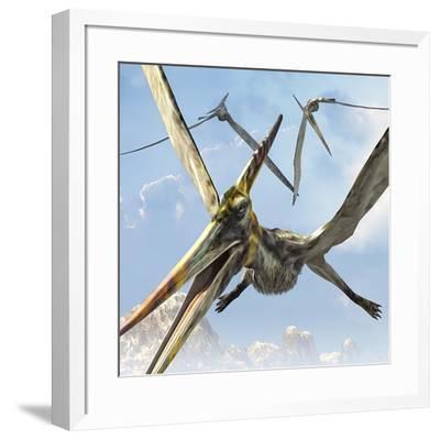 Flying Pterodactyls Searching for Food-Stocktrek Images-Framed Art Print