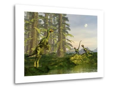 A Caudipteryx Watching Dilong Dinosaurs Approaching-Stocktrek Images-Metal Print