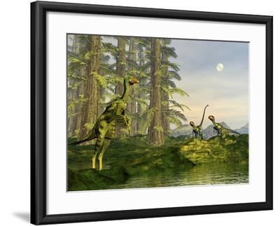 A Caudipteryx Watching Dilong Dinosaurs Approaching-Stocktrek Images-Framed Art Print