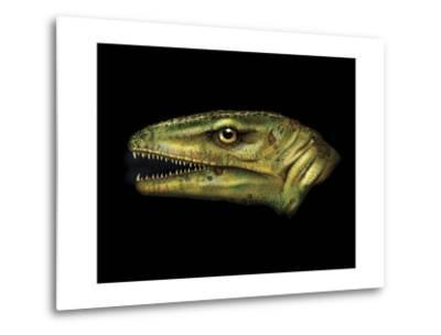Agnosphitys Portrait-Stocktrek Images-Metal Print