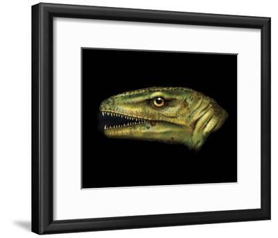 Agnosphitys Portrait-Stocktrek Images-Framed Art Print