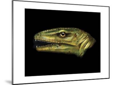 Agnosphitys Portrait-Stocktrek Images-Mounted Art Print