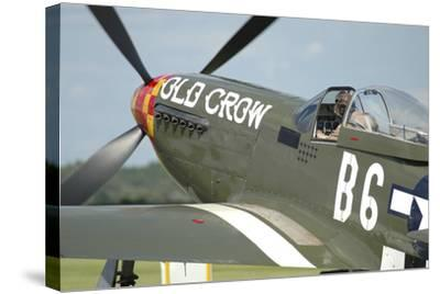 P-51D Mustang in United States Army Air Corps Colors-Stocktrek Images-Stretched Canvas Print