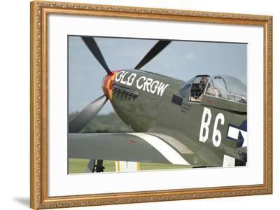 P-51D Mustang in United States Army Air Corps Colors-Stocktrek Images-Framed Photographic Print