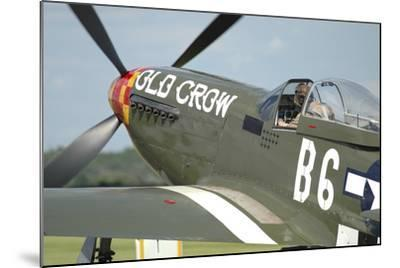 P-51D Mustang in United States Army Air Corps Colors-Stocktrek Images-Mounted Photographic Print