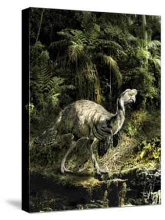 Citipati Dinosaur Seeking Prey in the Forest-Stocktrek Images-Stretched Canvas Print