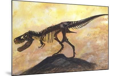 Tyrannosaurus Rex Dinosaur Skeleton-Stocktrek Images-Mounted Art Print