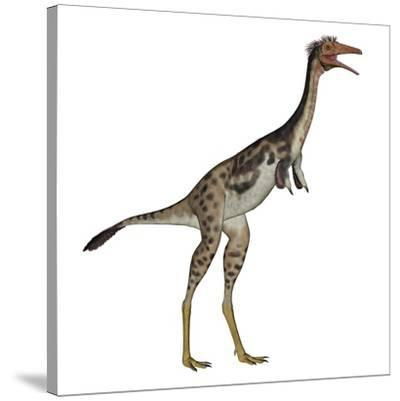 Mononykus Dinosaur Standing-Stocktrek Images-Stretched Canvas Print