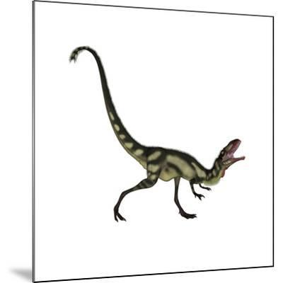 Dilong Dinosaur Roaring-Stocktrek Images-Mounted Art Print