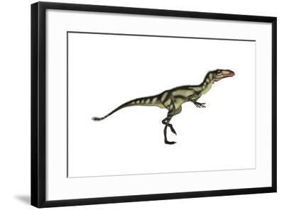 Dilong Dinosaur-Stocktrek Images-Framed Art Print