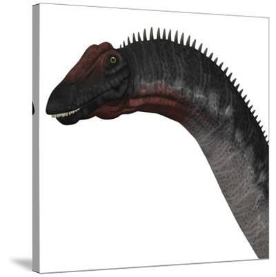 Apatosaurus Dinosaur-Stocktrek Images-Stretched Canvas Print