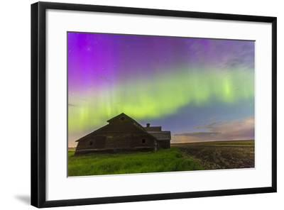 Purple Aurora over an Old Barn in Southern Alberta, Canada-Stocktrek Images-Framed Photographic Print