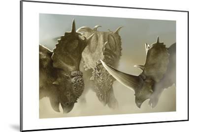 A Group of Pachyrhinosaurus Dinosaurs-Stocktrek Images-Mounted Art Print