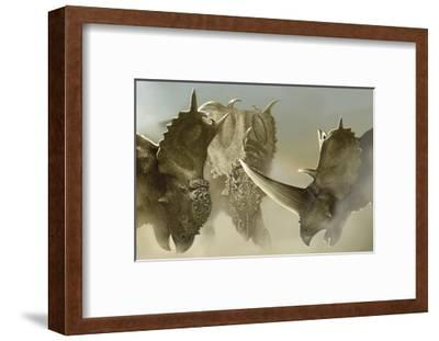 A Group of Pachyrhinosaurus Dinosaurs-Stocktrek Images-Framed Art Print