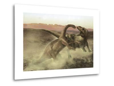 Sinraptor Fighting a Juvenile Bellusaurus-Stocktrek Images-Metal Print