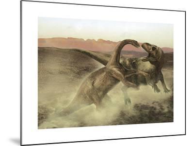 Sinraptor Fighting a Juvenile Bellusaurus-Stocktrek Images-Mounted Art Print