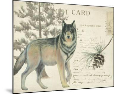 Northern Wild I-James Wiens-Mounted Art Print