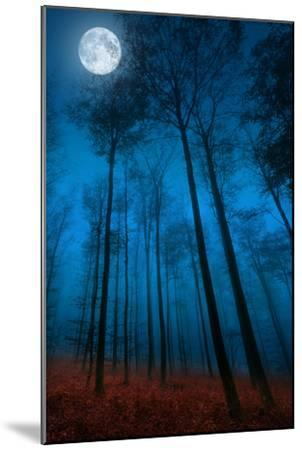 Dialogue with the moon-Philippe Sainte-Laudy-Mounted Photographic Print