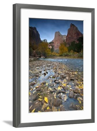 USA, Utah, Zion National Park. the Sentinel with Fallen Leaves in Virgin River-Jaynes Gallery-Framed Photographic Print