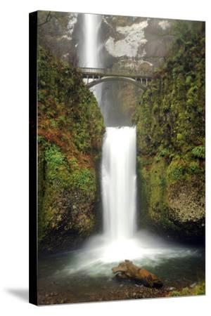 Multnomah Falls and Creek, Multnomah Falls Sp, Columbia Gorge, Oregon-Michel Hersen-Stretched Canvas Print