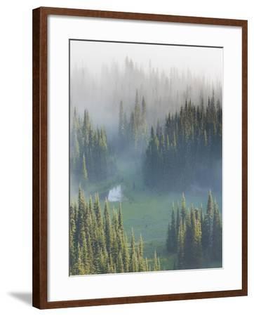 Washington, Mount Rainier National Park. Overview of Surprise Lake-Jaynes Gallery-Framed Photographic Print