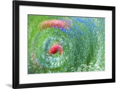 USA, Washington, Whidbey Island. Montage of Flowers and Greenery-Jaynes Gallery-Framed Photographic Print
