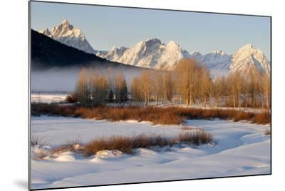 USA, Wyoming, Grand Tetons National Park. Oxbow Bend in Winter-Jaynes Gallery-Mounted Photographic Print