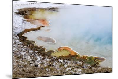 USA, Wyoming, Yellowstone National Park. Silex Spring Pool-Jaynes Gallery-Mounted Photographic Print