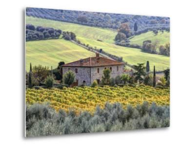 Italy, Tuscany. Vineyards and Olive Trees in Autumn by a House-Julie Eggers-Metal Print