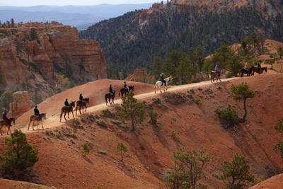 Utah, Bryce Canyon National Park, Horse Trekkers Near Queens Garden Trail-David Wall-Framed Photographic Print