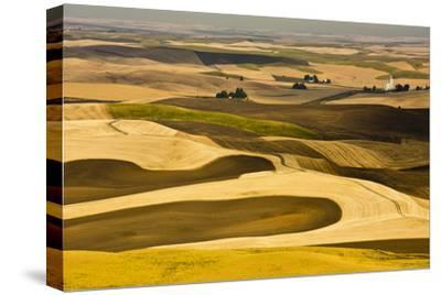 Palouse Fields, from Steptoe Butte, Steptoe Butte Sp, Washington-Michel Hersen-Stretched Canvas Print
