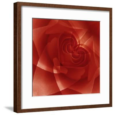 USA, Colorado, Lafayette. Red Rose Montage-Jaynes Gallery-Framed Photographic Print