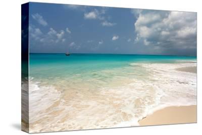 Barbuda Beach, Caribbean-Susan Degginger-Stretched Canvas Print