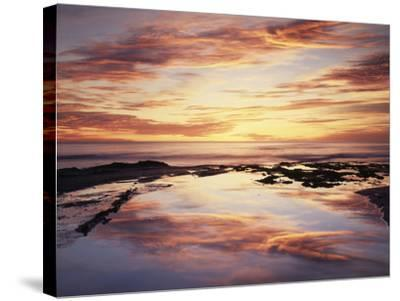 California, San Diego, Sunset Cliffs, Sunset Reflecting in a Tide Pool-Christopher Talbot Frank-Stretched Canvas Print