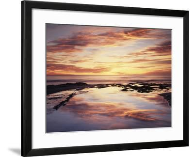 California, San Diego, Sunset Cliffs, Sunset Reflecting in a Tide Pool-Christopher Talbot Frank-Framed Photographic Print