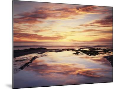 California, San Diego, Sunset Cliffs, Sunset Reflecting in a Tide Pool-Christopher Talbot Frank-Mounted Photographic Print
