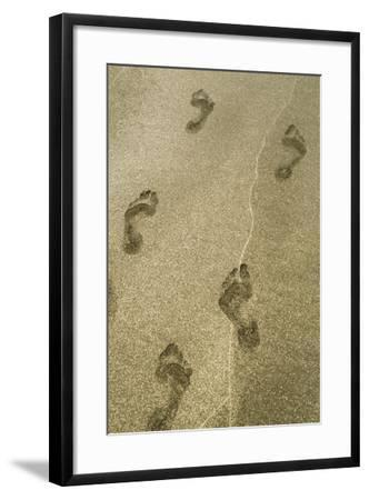 Footprints in the Sand, Puerta Vallarta, Mexico-Julien McRoberts-Framed Photographic Print