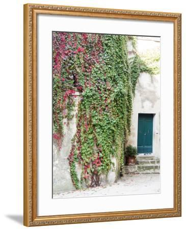 Italy, Tuscany, Monticchiello. Red Ivy Covering the Walls of Buildings-Julie Eggers-Framed Photographic Print