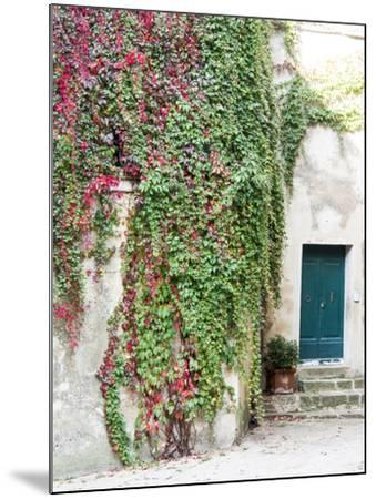 Italy, Tuscany, Monticchiello. Red Ivy Covering the Walls of Buildings-Julie Eggers-Mounted Photographic Print