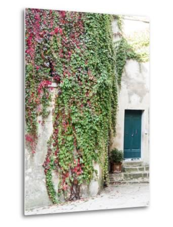 Italy, Tuscany, Monticchiello. Red Ivy Covering the Walls of Buildings-Julie Eggers-Metal Print