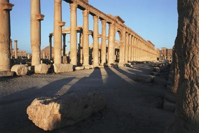 Syria, Palmyra, Colonnaded Street, the Decumanus-Steve Roxbury-Framed Photographic Print