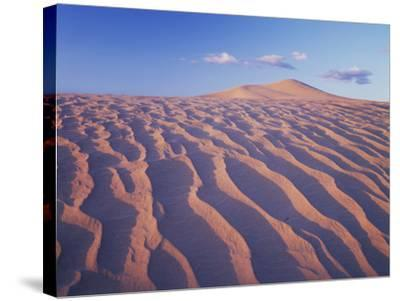 California, Dumont Dunes in the Mojave Desert at Sunset-Christopher Talbot Frank-Stretched Canvas Print