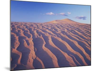 California, Dumont Dunes in the Mojave Desert at Sunset-Christopher Talbot Frank-Mounted Photographic Print