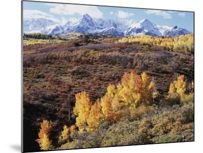 Colorado, San Juan Mountains, Autumn Colors of Aspen at Dallas Divide-Christopher Talbot Frank-Mounted Photographic Print