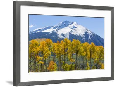 Colorado. Fall Aspens and Mountain-Jaynes Gallery-Framed Photographic Print