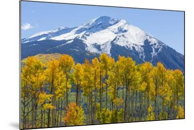 Colorado. Fall Aspens and Mountain-Jaynes Gallery-Mounted Photographic Print