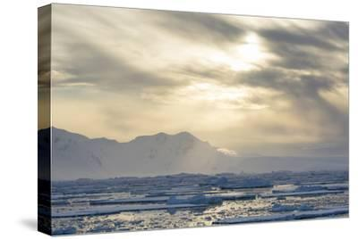 Antarctica. Near Adelaide Island. the Gullet. Ice Floes at Sunset-Inger Hogstrom-Stretched Canvas Print